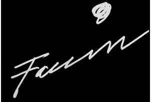 Franca Faccin – Opere e biografia